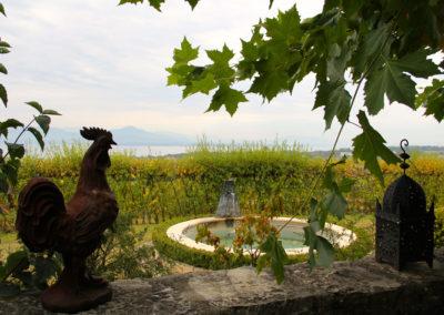 lac-leman-mont-sur-rolle-domaine-maison-blanche